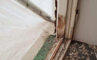Fönsterbyte eller Fönsterrenovering